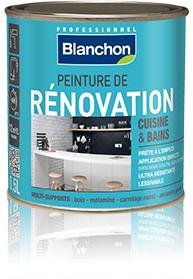 Peinture de renovation cuisine et bains blanchon