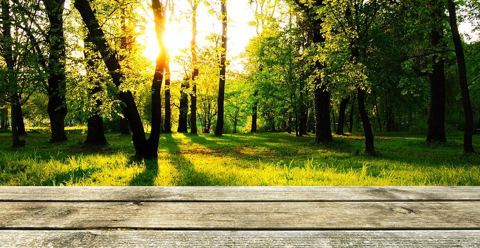 D'un Dégriser Une Avant Bois Terrasse Application Saturateur Sarl LzMVGqpSU
